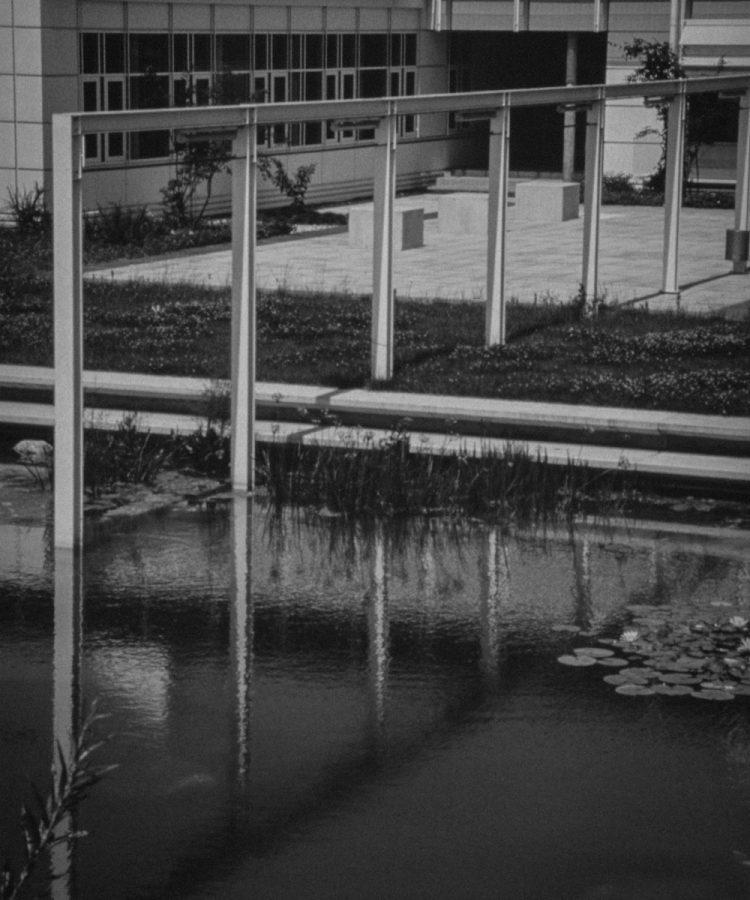 1995_02_D7