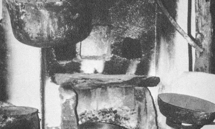 1981_25_F1